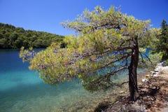 croatia wyspy mljet raj obrazy stock