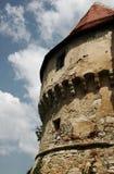 Croatian ancient castle Veliki Tabor. Corner tower  of Croatian ancient castle Veliki Tabor Royalty Free Stock Photos