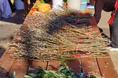 Croatian coast Farmer market stock image