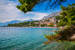 Croatian landscape through pines Royalty Free Stock Images