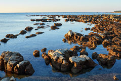 Croatian rocky shore Stock Image