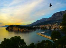 Croatian sunset with silhouette of a falcon - Makarska Royalty Free Stock Photos