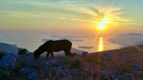 Croatie Photo stock