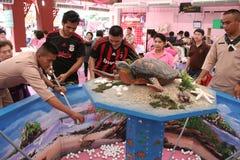 Croce rossa 2011 giusto (la Tailandia) Fotografia Stock Libera da Diritti