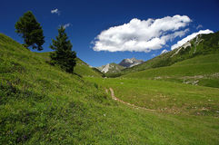 Crocedomini. Passo del Crocedomini (Bs), Lombardy,Italy,view of the pasture Royalty Free Stock Photo