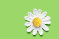 Crochet daisy Stock Photos