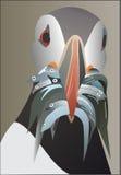 Crochet de Papageitaucher un poisson Photographie stock