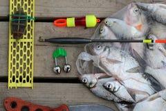 Crochet de poissons Images stock