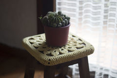 Crochet decoration over a wooden bench with a cactus on top Stock Photo