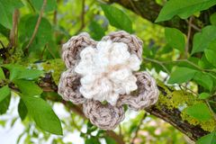 Crochet flower on a tree. Crocheted thick yarn flower hanging on a tree Stock Image
