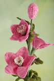 Crochet flowers hellebores Stock Image