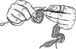 Crochet le mani royalty illustrazione gratis