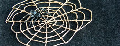 Crocheted cobweb with black rubber spiders on black velvet background. Dark halloween october concept. royalty free stock images