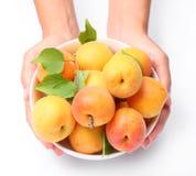 crockery абрикосов спелый стоковое изображение