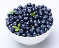 Crockery with blueberries. royalty free stock photo