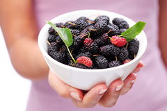 Crockery with mulberries. Stock Photography