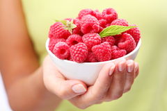 Crockery with raspberries. In woman hand Royalty Free Stock Image