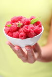 Crockery with raspberries. Crockery with raspberries in woman hand Stock Images