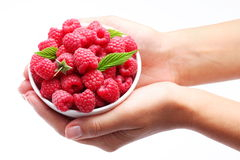 Crockery with raspberries in woman hands. Stock Photo