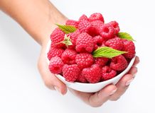 Crockery with raspberries in woman hands. Royalty Free Stock Images