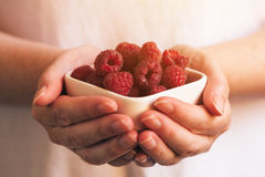 Crockery with raspberries in woman hands. Selective focus Royalty Free Stock Images