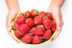 Crockery with strawberries in woman hands. Stock Images