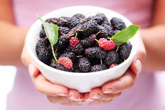 Crockery With Mulberries. Stock Images