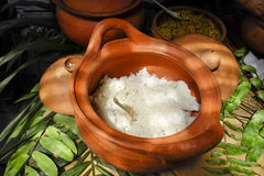Crockpot of steamed rice. Earthenware Crockpot of Steamed Rice on jungle leaves Stock Photo