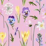 Croco giallo floreale senza cuciture e molto genere di modello senza cuciture dei fiori della molla su fondo rosa illustrazione vettoriale