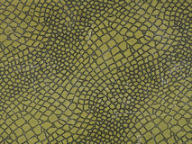 Croco, krokodyl, tło, zieleń zdjęcia royalty free