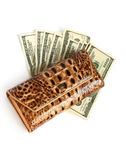 Croco leather wallet with euros isolates on white Royalty Free Stock Photography