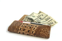 Croco leather wallet full of dollars Stock Image