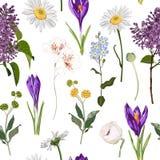 Croco viola floreale senza cuciture e molto genere di modello senza cuciture dei fiori della molla su fondo bianco d'annata royalty illustrazione gratis