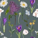 Croco viola floreale senza cuciture e molto genere di modello senza cuciture dei fiori della molla su fondo scuro d'annata illustrazione vettoriale