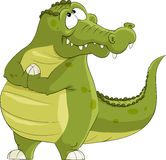 Crocodile. On a white background, vector Stock Photos