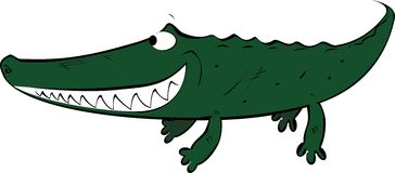 Crocodile. Royalty Free Stock Photos