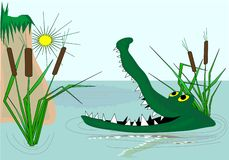 Crocodile. Green crocodile on the river Royalty Free Stock Photography