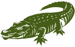 Crocodile Royalty Free Stock Photography