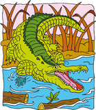Crocodile. That yawning by the river vector illustration