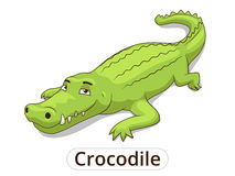 Crocodile african savannah animal cartoon. Vector illustration for children royalty free illustration