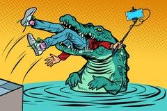 Crocodile attacked a man. Dangerous selfie royalty free illustration