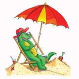 Crocodile beach Stock Images