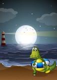 A crocodile at the beach Stock Photos