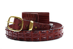 Crocodile belt and wallet Royalty Free Stock Photo