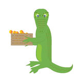Crocodile carries a box with oranges Stock Photos