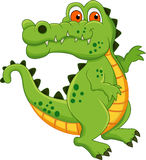 Crocodile cartoon Royalty Free Stock Images