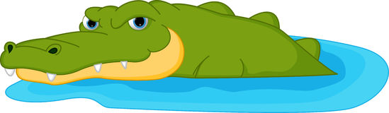 Crocodile cartoon. Illustration of Crocodile cartoon isolated on white royalty free illustration