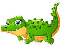Crocodile cartoon isolated on white background Stock Images
