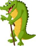 Crocodile cartoon Royalty Free Stock Image