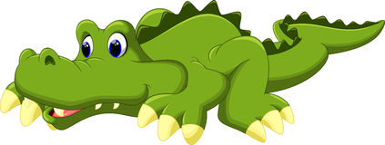Crocodile cartoon. On a white backgrund vector illustration